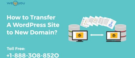 How to Transfer A WordPress Site to New Domain