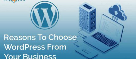 Reasons To Choose WordPress From Your Business