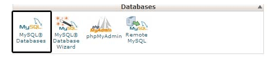 Check the Database