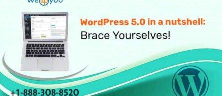 WordPress 5.0 in a nutshell