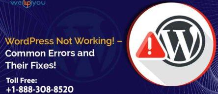 WordPress Not Working