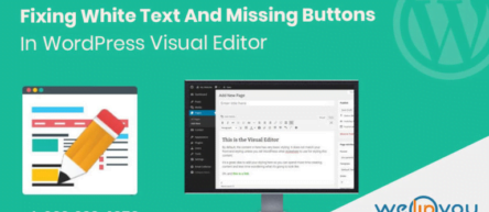 WordPress visual editor not working