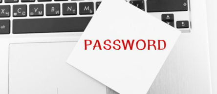 How to reset the WordPress administrator password?