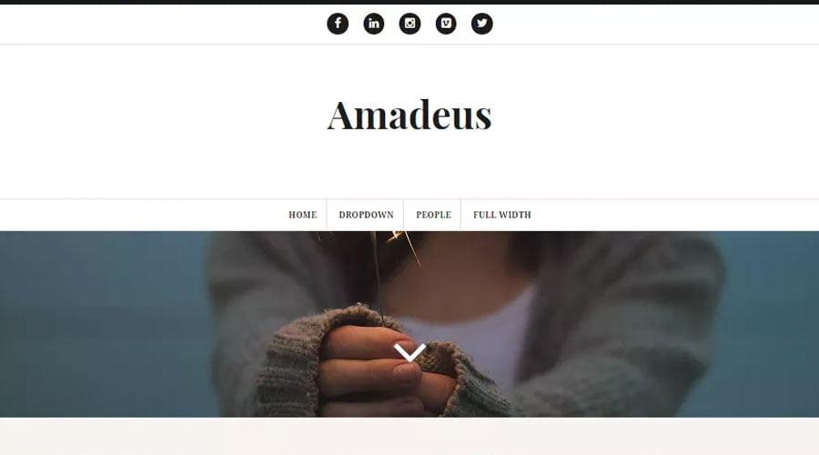 Amadeus wp theme