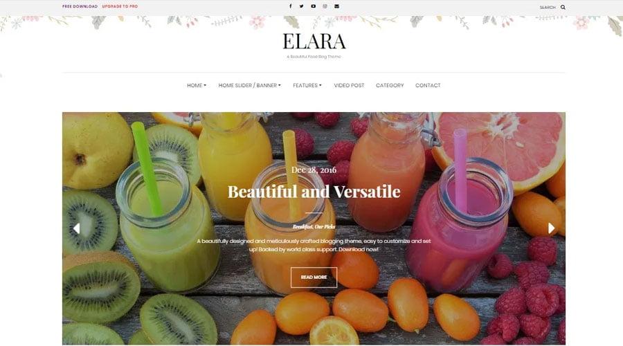 Elara wp theme