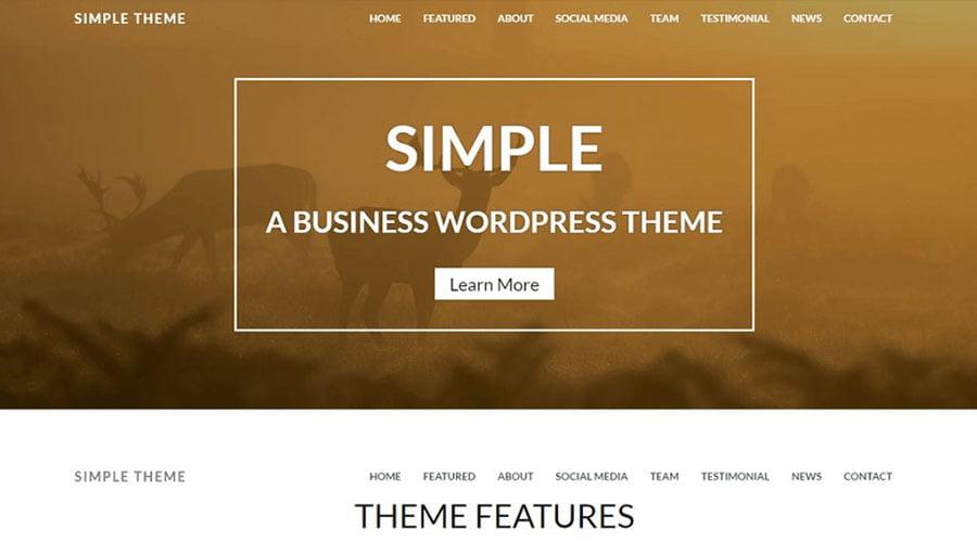Simple wp theme