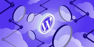 what-is-wordpress wewpyou