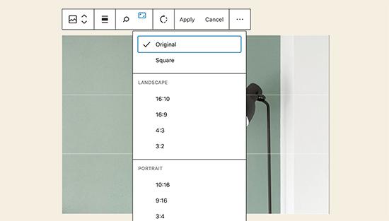 editimage inline